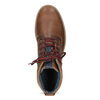 Men's Winter Ankle Boots bata, brown , 896-3677 - 17