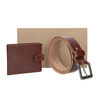 Gift pack with leather belt and wallet bata, brown , 954-3201 - 13